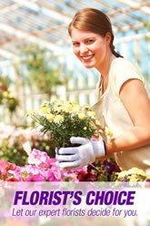 Florist Choice 3