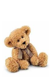 Small Teddy Bear -   zFlowers.com - Japan   JP-JPY-EN